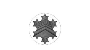 Concrete Snowflake