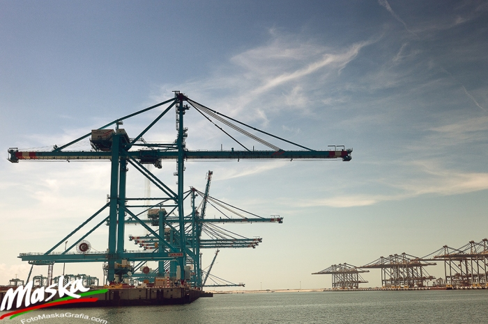 Cranes - Port of Rotterdam, Netherlands