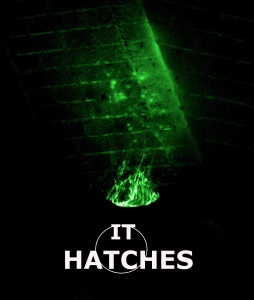 It Hatches - Copy