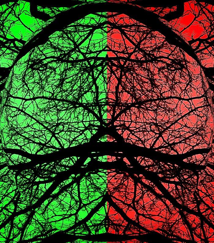 Split Vision 2