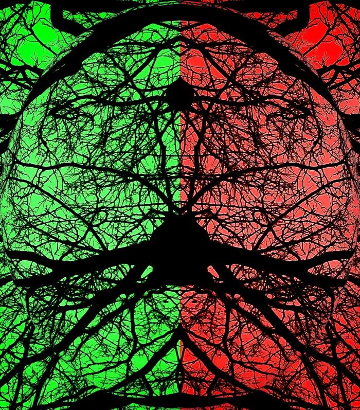 Split Vision 3